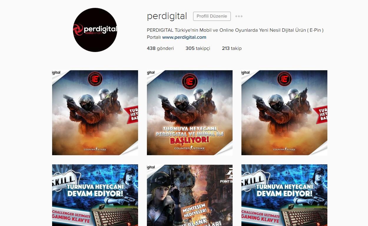 Perdigital Social Media